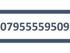 955559509 O2 SIM CARD GOLD EASY PLATINUM VIP MOBILE PHONE NUMBER 07955559509
