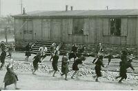 WW II German Photo <>  . .Jewish Women - Concentration Camp...