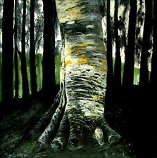 Quality Hand Painted Oil Painting Repro Gustav Klimt Birch in Forest 36x36in