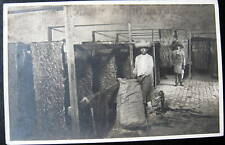 **1900's BUFFALO SKINS~TANNING? SEWING? DRYING ? RPPC