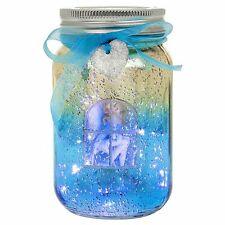 Shudehill Firefly Fairy LED Jar Aqua