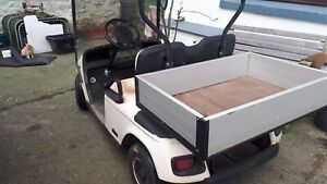 2 seater  golf buggy