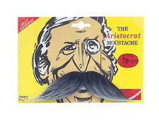 Grey Aristocrat Moustache Upper Class Victorian Period Fancy Dress