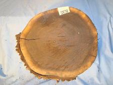 """black walnut log slice live edge slab wood table top 13 1/2""""L 14 1/2""""W 2 7/8""""L"""
