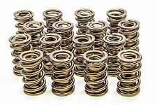 ISKY TOOL ROOM RAD RACING VALVE SPRINGS 9988-RAD