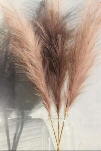 Beautiful Extra Large Fluffy Faux Pampas - Dusty Mocha