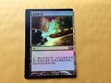 Miscut Chinese Foil Terramorphic Expanse M10 Misprint MTG Magic GENUINE EDH