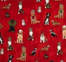 Holly Jolly Cat Dog Rot Patchworkstoff Stoffe Weihnachten Patchwork Hunde Katzen