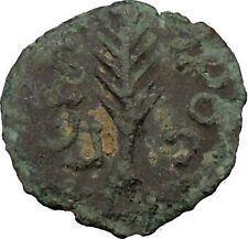 Porcius Festus  Jerusalem Nero Ancient  Greek / Roman Coin Palm branch   i36718