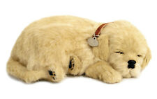 Perfect Petzzz - Golden Retriever - Life Like Breathing Puppy