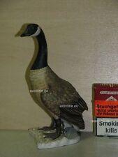 +# A010082_01 Goebel Archiv Muster Gans Canada Goose Kanadagans 38-523 Plombe
