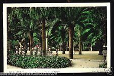 236.-MALAGA -27 Parque (Foto coloreada L.Roisi)