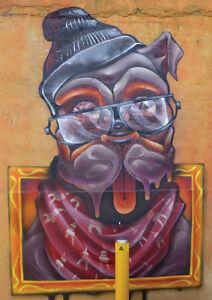 Bulldog - A2 Poster - Melbourne Street Art Photography - Original photo