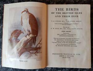 VINTAGE BIRDS/EGGS OF THE BRITISH ISLES.1958.