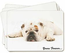 White Bulldog 'Yours Forever' Picture Placemats in Gift Box, AD-BU9P