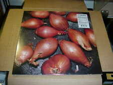 EP:  TY SEGALL - Fried Scallots    NEW SEALED