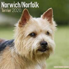 Norwich/Norfolk Terrier - 2020 Wall Calendar - Brand New - 806339