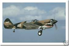 WWII P40 Fighter Aircraft in Flight Air Force Military POSTER