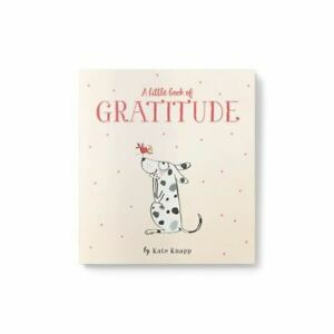 Little Book Of Gratitude Self Help Thankfullness