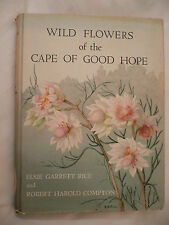 Wild Flowers of the Cape Of Good Hope.E.Rice&R.Compton.1stEdition.Not ex-library