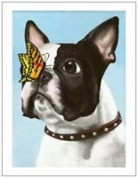 Sale Boston terrier dog art Greeting note cards set of 10
