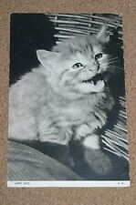 "Vintage Postcard: Cat, Kitten in a Basket, ""Happy Days"", Scowling, 1957"