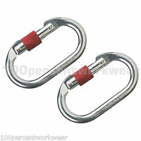 2x Delta Plus AM002 Work Safety Steel Screw Gate Karabiner Carabiner Fall Arrest