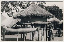 Africa PIGEONRY TAUBENSCHLAG PIGEONNIER Vintage 30s Ethnic Nude RPPC LAMMERETZC