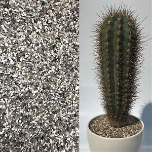 *FINE* 2-3mm White & Grey Grit Dressing Plant Cactus Succulent Bonsai Pot Topper