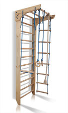 Sport Ladder Wall Bars Gymnastic Climbing Children Home Gym Gymnastic Workout