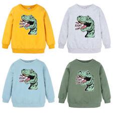 Toddler Baby Boys Girls Kids Clothes Dinosaur Long Sleee Tops T Shirt Tee 1-8Y