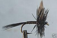 10 x Mouche de Peche Sèche Quill noire  H14/16/18/20/22