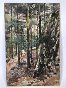 Antique Watercolour Painting Woods Forest Landscape Signed