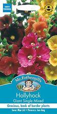 Mr Fothergills - Fiore - Altea Gigante Singolo Misto - 50 Semi