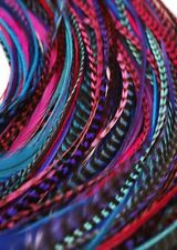 """Hair Feathers 28 berry bulk wholesale real Feather for Hair Extensions 5-11"""""""