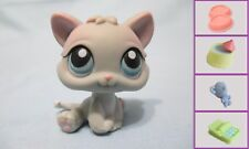 Littlest Pet Shop Cat Kitten Baby Gray 198 Authentic Lps