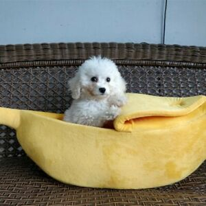 Warm Pet Dog Cat Bed Nest Cute Banana Shape Kennel Soft Plush Lovely Toy