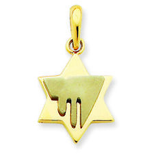 14K Two-Tone Gold Fancy Star of David and Chai Charm Pendant MSRP $468