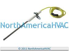 OEM Amana Goodman Janitrol Gas Furnace Flame Sensor Sensing Rod C6437502