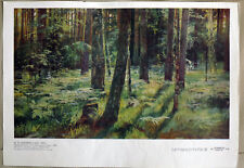 Shishkin, Ferns in the Forest (1883) print reproduction