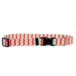 NEW Red and Green Chevron Dog and Cat Collar or Leash by Yellow Dog Design