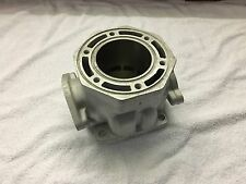 Replated Arctic Cat 440 Cylinder ZL 440 Jag Prowler Panther 3003-748 $100 CORE