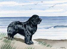 NEWFOUNDLAND Watercolor OVERSIZED ART Print Signed DJR