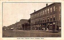 MI - 1900's South Side Chicago Street in  Sturgis, Michigan - St. Joseph County