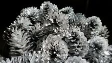 """Silver painted pine cones 2.5""""-3"""" tall one dozen, silver pine cones"""