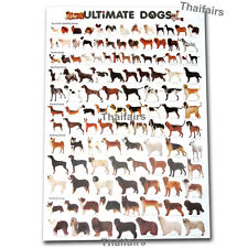 ULTIMATE BREEDS DOG MORE THAN 100 DOGS SPECIES POSTER FREE SHIPPING WORLDWIDE