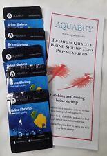 Brine (Artimia) Shrimp Eggs pre-measured for 500mL of water -5 packs