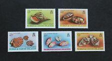 TURKS & CAICOS ISLANDS - 1980 SCARCE SHELLS SET MNH RR