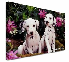 More details for dalmatian puppy dogs 'soulmates' x-large 30