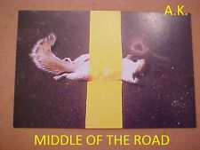 POST CARDS   ROAD KILL   MIDDLE OF TH  ROAD